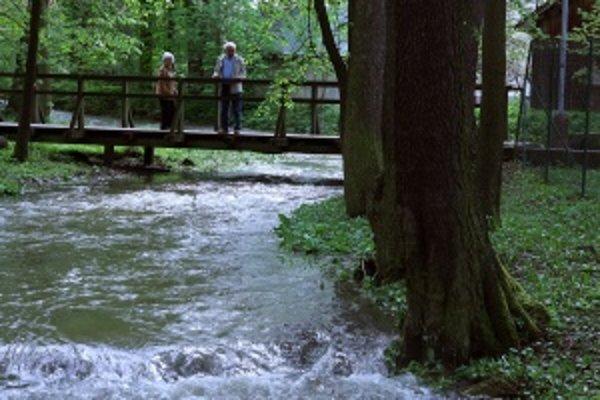 Teplický park. V koryte pokojnej Teplice sa včera valilo priveľa vody. Na niektorých miestach sa aj vyliala.