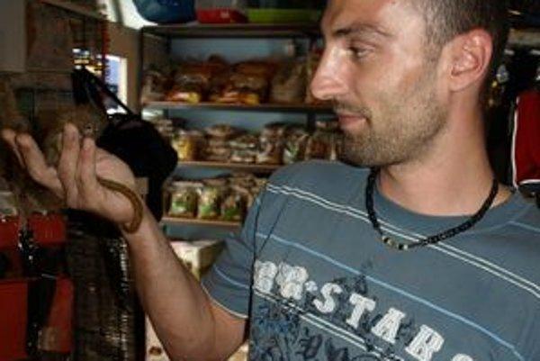Róbert ŠimčiskoO Kosmana sa stará už tri roky, z tohto druhu odchoval už celkom osem opíc.