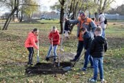 Deti pri sadení stromov.
