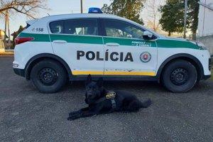 Na mieste činu pomáhal aj služobný pes.