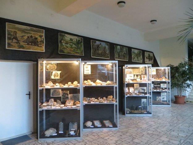 Výstava Kamenný herbár.