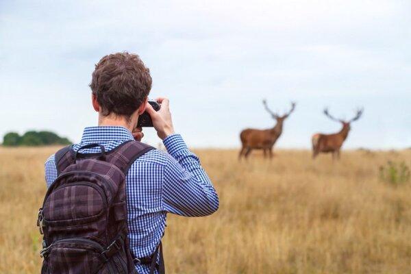 Pre neprofesionálnych fotografov zrealizovali v SOS tri semináre s rôznymi témami, napr. krajina Spiša a jej fotografovanie v rôznych obdobiach a podmienkach.
