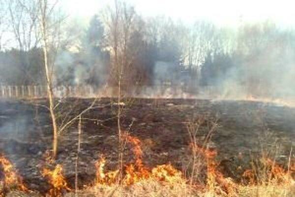Ľudia sú nepoučiteľní, pred pálením odpadu a vypaľovaním trávy ich nezastaví ani to, že môžu dostať pokutu.