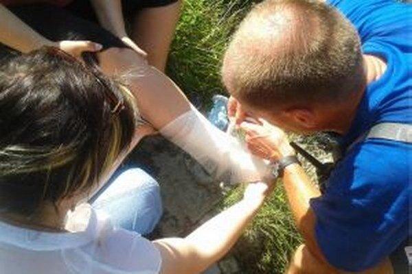 Úrazovosť v pohoriach, kde slovenskí horskí záchranári pôsobia, klesla o trinásť percent oproti predchádzajúcej sezóne. Výnimkou boli len Západné Tatry.