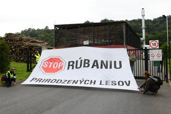 Protest pred spaľovňou Bioenergy Bardejov.