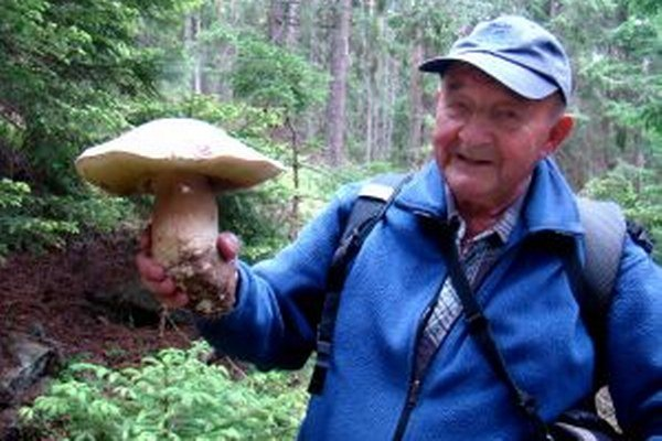 Jaroslav Šoučík nazval gigantický zdravý hríb výskumníkom.