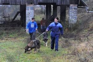 Pracovníci Slobody zvierat odoberajú 7. novembra 2009 sedem vychudnutých kaukazských ovčiakov a ich krížencov zo samoty v Podmaníne mestskej časti Považskej Bystrice, kde ich chovali manželia z Trnavy.