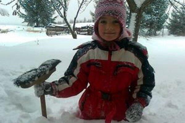 Pri domoch, na sídliskách, cestách a parkoviskách ľudia odpratávali sneh takmer nepretržite cez deň aj v noci.