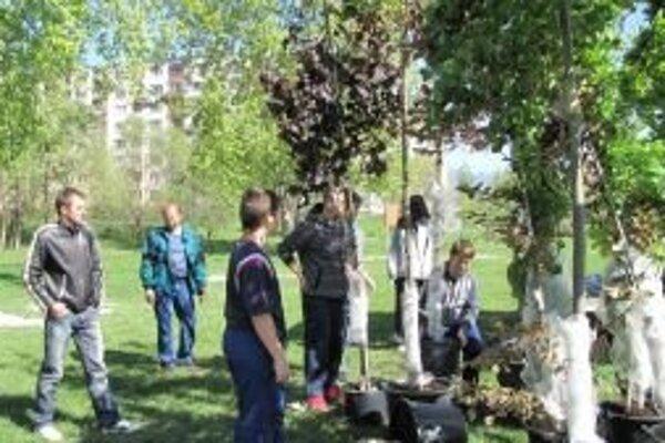 Občianske združenie Tatry vybudovalo na Podbrezinách Zelenú oázu pri vode.
