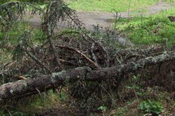 Popadané stromy zavalili turistické chodníky.