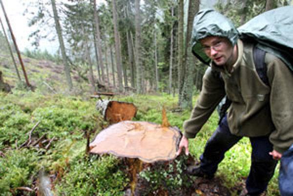 Smrekovica s piatym stupňom ochrany prírody.