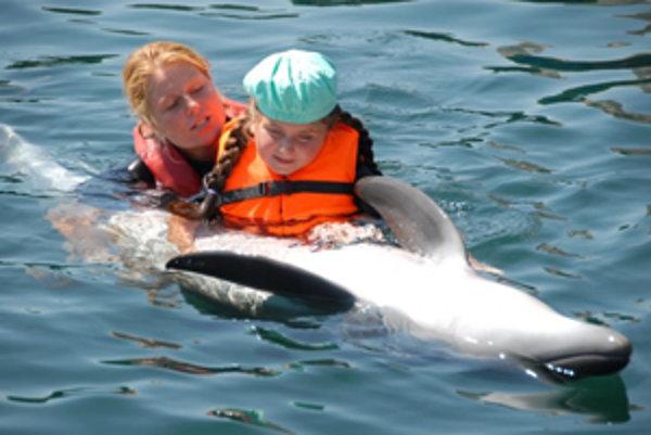 Delfinárium v strednej Európe podľa majiteľa termálneho parku v Bešeňovej chýba.