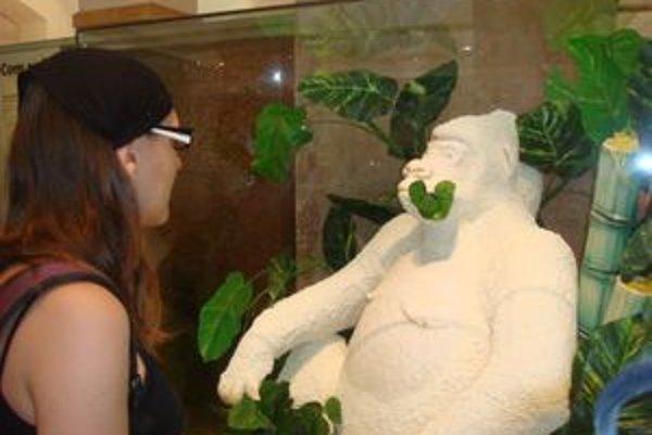 Múzeum čokolády v Barcelone ukrýva množstvo čokoládových prekvapení. Napríklad aj gorilu z bielej čokolády v skutočnej veľkosti.