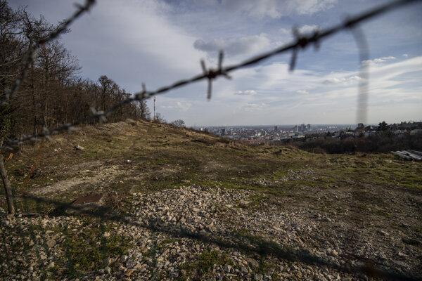 Vyrúbaný pozemok na Kolibe aj po piatich rokoch ostáva nezalesnený.