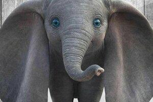 Dumbo. Slon, ktorý vie letať.