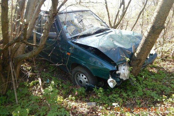 Vodička s autom narazila do stromu.