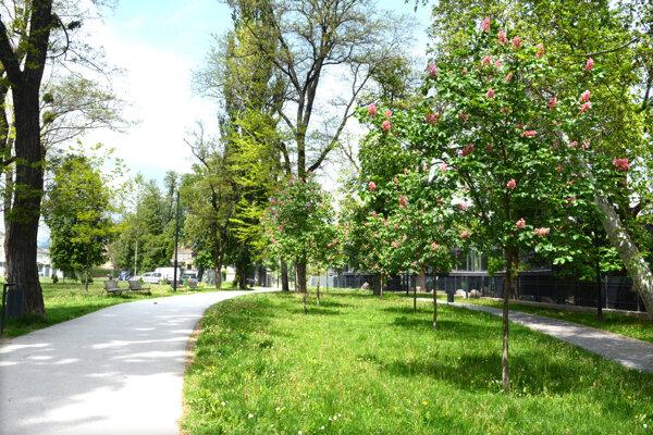 Park predstavuje historickú súčasť mesta, nachádzajú sa v ňom cenné dreviny, historická štruktúra komunikácií a malých stavieb.