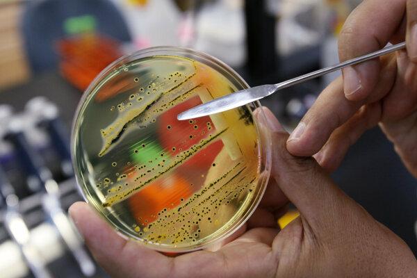 Ilustračná fotografia. Britskí vedci vytvorili prvý živý, umelý organizmus s celkom zmenenou DNA.
