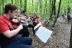 Konzervatoristi využili na muzicírovanie lesopark, ktorý je blízko školy.