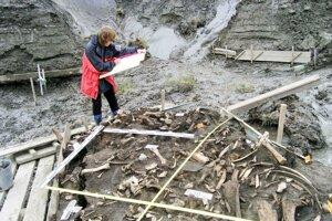 Miesto, kde našli dva mliečne zuby patriace chlapcom z doteraz neznámej populácie ľudí na severovýchodnej Sibíri.