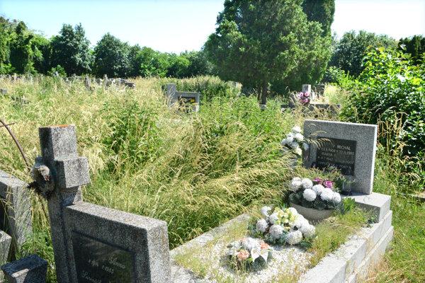 Dostať sa cez vysokú trávu k hrobu svojich blízkych je náročné.