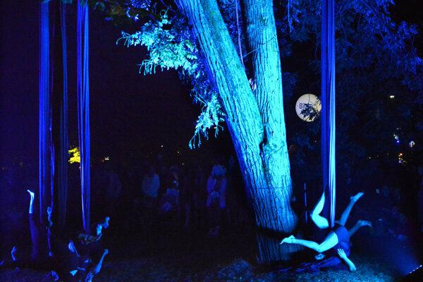 Mestský park hostil každý rok počas Bielej noci minimálne jednu inštaláciu. Nad ďalším ročníkom visí otáznik.
