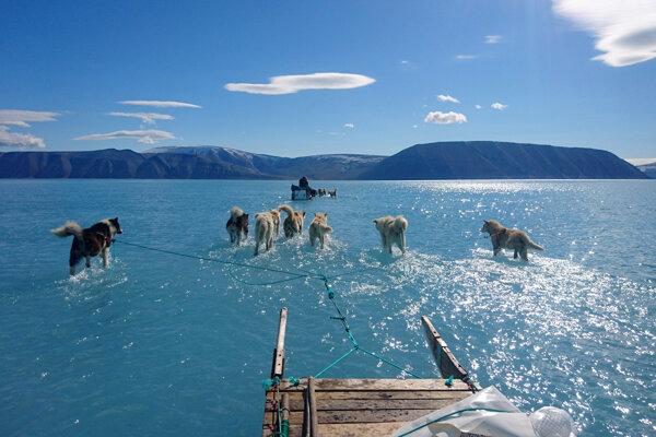 Výskumník Steffen Olsen so psím záprahom na mieste, kde mal byť ľad. Oblasť však pokrývalo plytké jazero, ktoré vytvoril roztopený ľad.