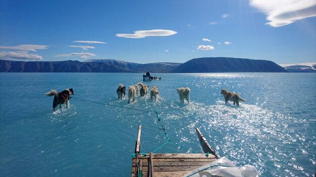 Výskumník Steffen Olsen so psím záprahom na mieste, kde mal byť ľad. Oblasť však pokrývalo plytké jazero, ktoré vytvoril roztopený ľad z grónskych ľadovcov.