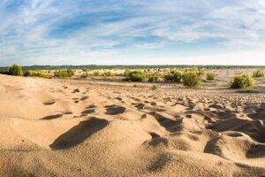 Bledowská púšť.