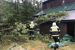 V obci spadlo viacero stromov.