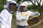 Zaúčanie včelára.