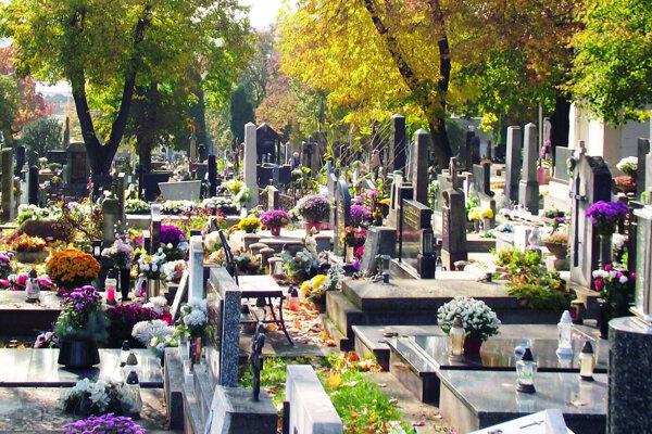 Hlavný mestský cintorín.