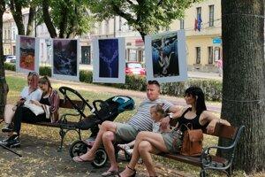 Netradičná výstava v mestskom parku.
