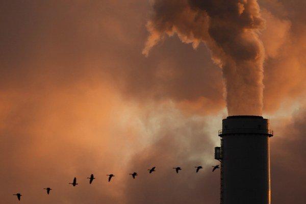 Tempo rastu oxidu uhličitého pokleslo.