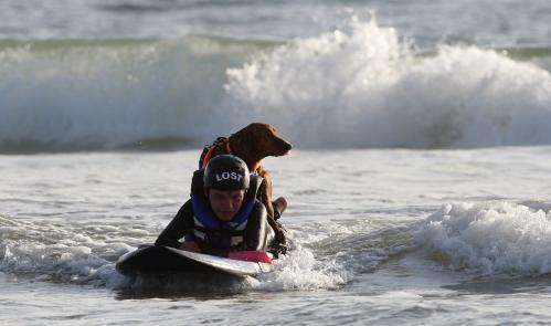 vozickar-surfer5_sitaap.jpg