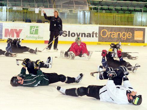 hokejisti1.jpg