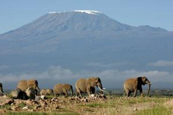 Vrchol Kilimandžára je vo výške 5895 metrov nad morom. Napriek tomu nie je imúnny pred postupujúcim globálnym otepľovaním.