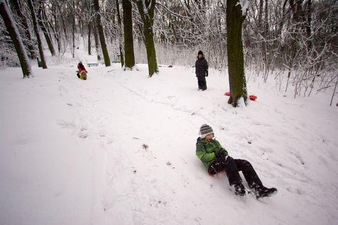 sneh15_res.jpg