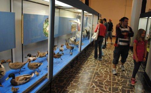 miko_muzeum-expozicie5_210513_res.jpg