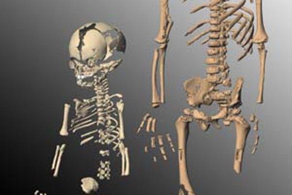 Dve z najzachovalejších detských kostier neandertálcov, vľavo asi jednotýždňového novorodenca z jaskyne Mežmajskaja, vpravo 19-mesačného z jaskyne Dederíja.