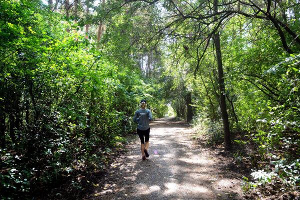 Napriek tomu, že je zeleň na tomto mieste zanedbaná, lokalitu využívajú napríklad bežci.
