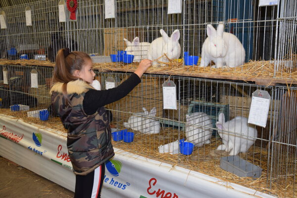 Radosť z výstavy majú okrem chovateľov najmä deti.