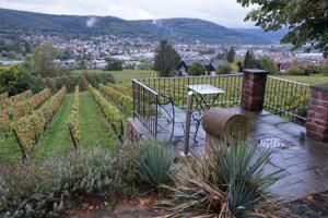 Vinárstvo a vinotéka sú priamo uprostred viníc.