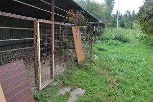 Karanténna stanica pre zvieratá vyrastie v areáli VPS.