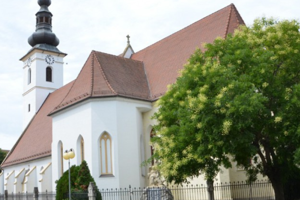 Farský kostol Nanebovzatia Panny Márie v Pezinku