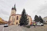 V Prešove už nainštalovali vianočný stromček na tradičné miesto.