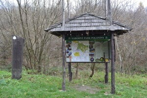 Národný park Poloniny.