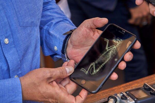 Archeológovia v Sakkáre predstavili nový objav múmií levíčat a desiatok mačacích sošiek.
