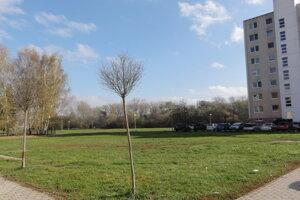 Na tejto lúke chce investor postaviť parkovací dom. Vľavo stojí dominikánsky kláštor.