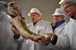 Boris Johnson na rybom trhu v Grimsby.